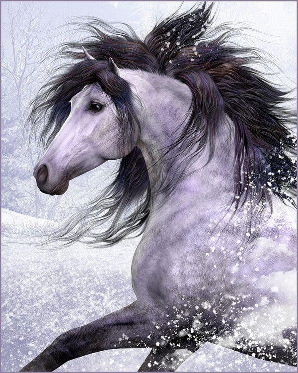 Fonds cran chevaux page 2 - Cheval a imprimer noir et blanc ...