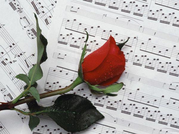 fonds ecrans fleurs - Page 3